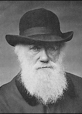 Charles_Darwin_1880