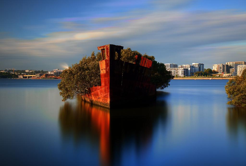 Floresta-flutuante-em-navio-abandonado-3