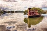 Floresta-flutuante-em-navio-abandonado-7